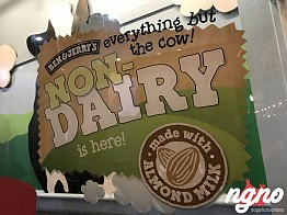 Ben and Jerry's: The New Almond Milk Dairy Free Ice Cream