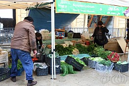 10 Years Souk el Tayeb: Beirut's Farmers Market (The Video)