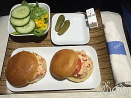 Flying Delta Airlines Business Class to New York