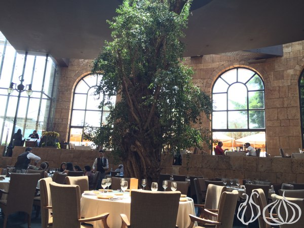 Babel_Dbayeh_Restaurant_Review37